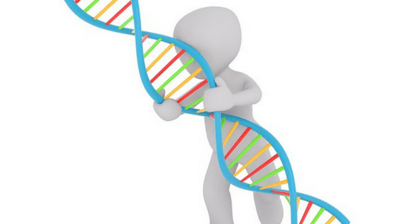 Epigenetics – Parenting begins before conception
