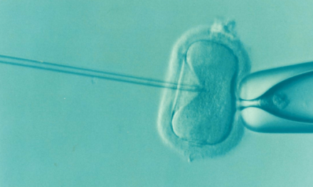 Misleading IVF claims – Fact and Opinion